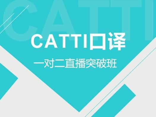 CATTI,三级口译,,一对二,,直播